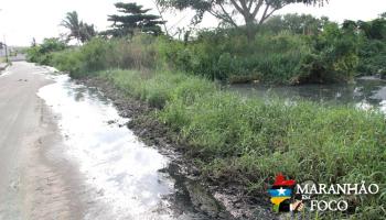 Reserva ambiental no Calhau vira depósito de despejo de esgoto